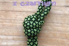 jaskrawy zielony z czarnym