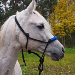 Dla wielbicieli koni - Kantary i uwiązy